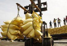 Les importations atteignent 330,9 milliards de FCFA au mois de juin 2020